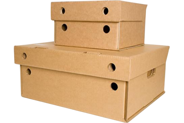 Specialised Shipper Cartons